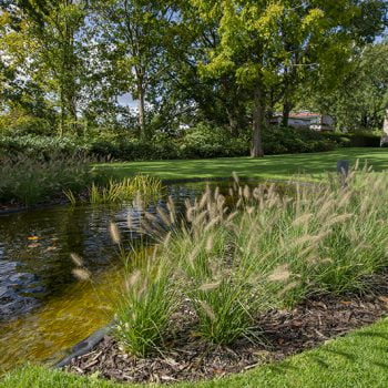 Tuin aanleg Mol